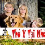 Tám lời khuyên khi bạn bắt đầu nuôi một con chó con