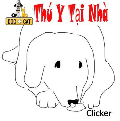 Tổng Quan về huấn luyện chó