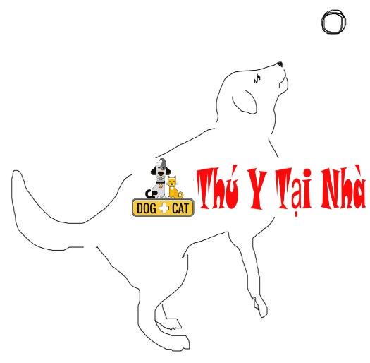 dạy chó bắt đồ vật