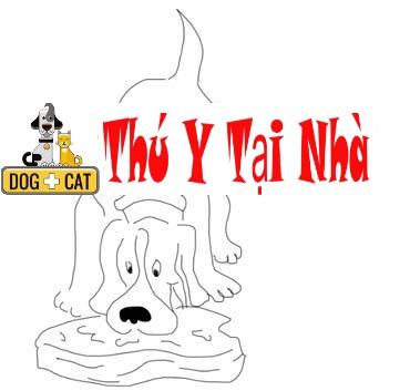 dạy chó không ăn bậy không ăn thức ăn rơi vãi