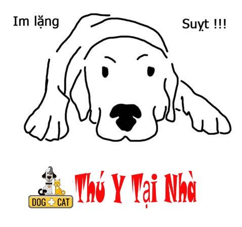 dạy chó lệnh im lặng