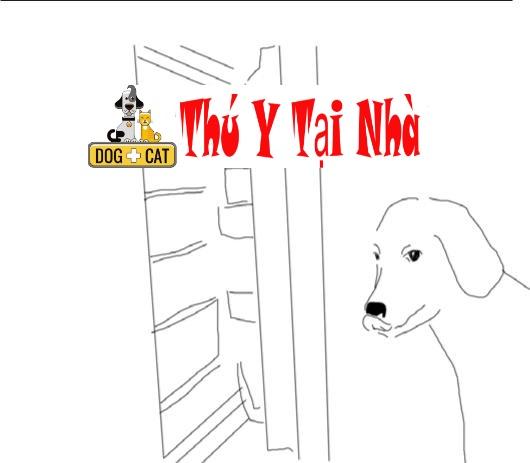 dạy chó mở và đóng cửa