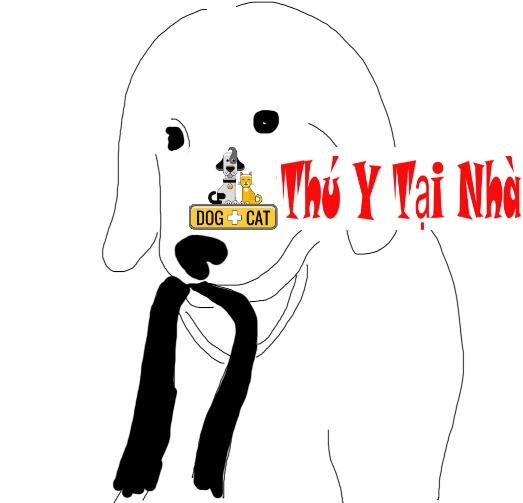 dạy chó mang đồ vật cho chủ