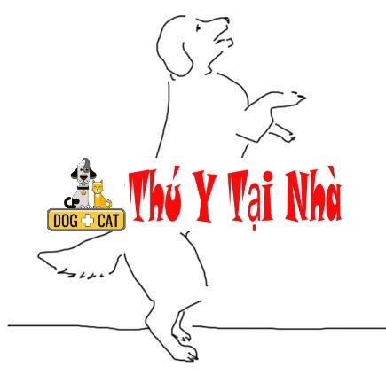 dạy lệnh chó đi bằng hai chân sau