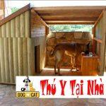 Thiết kế chuồng chăm chó, mèo con trong giai đoạn sinh đẻ