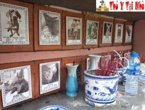 địa chỉ nghĩa trang chó mèo uy tín tại hà nội
