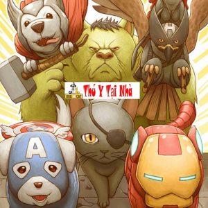cách đặt tên chó mèo theo tên siêu anh hùng marvel