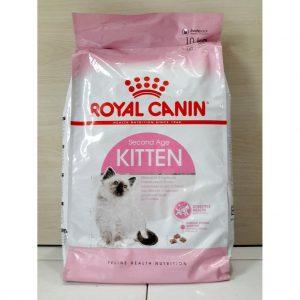 thức ăn hạt khô royal canin kitten cho mèo