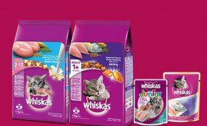 thức ăn hạt khô whikas cho mèo